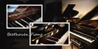โปรโมชั่น พิเศษเปียโนมือสอง Yamaha, Kawai, Weinbach, Disklavier, etc. คุณภาพดี สมราคา โดย Beethovenpiano