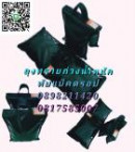 15009814 ซื้อขายเช็คราคา สุขภาพ ปทุมธานี ลำลูกกา