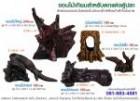 18310214 ซื้อขายเช็คราคา อื่นๆ กรุงเทพมหานคร ประเวศ